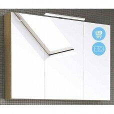 Raguvos Baldai Scandic veidrodinė spintelė su LED apšvietimu 1000x700 mm
