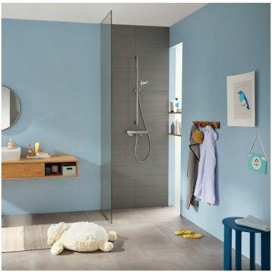 Termostatinis dušo maišytuvas Hansgrohe Ecostat E 2